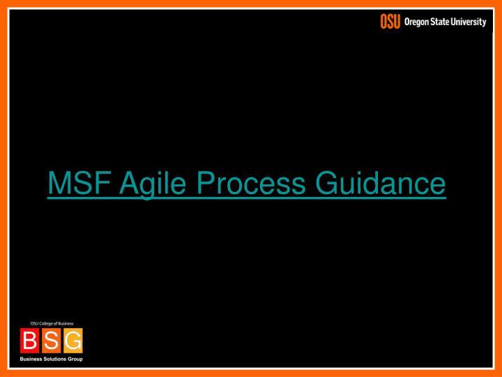 MSF Agile Process Guidance