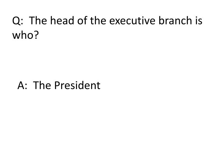 Q:  The head of the executive branch is