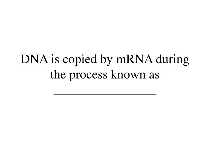 DNA is