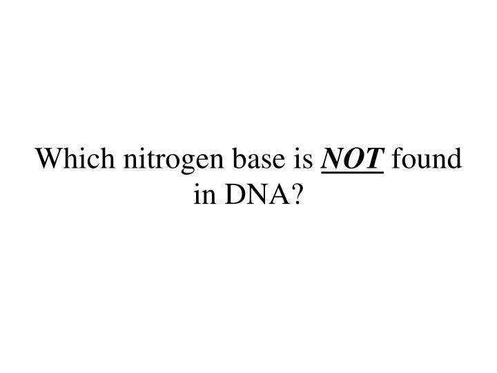 Which nitrogen base is