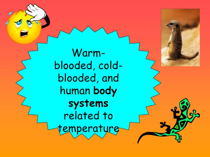 Warm-blooded, cold-blooded, and human