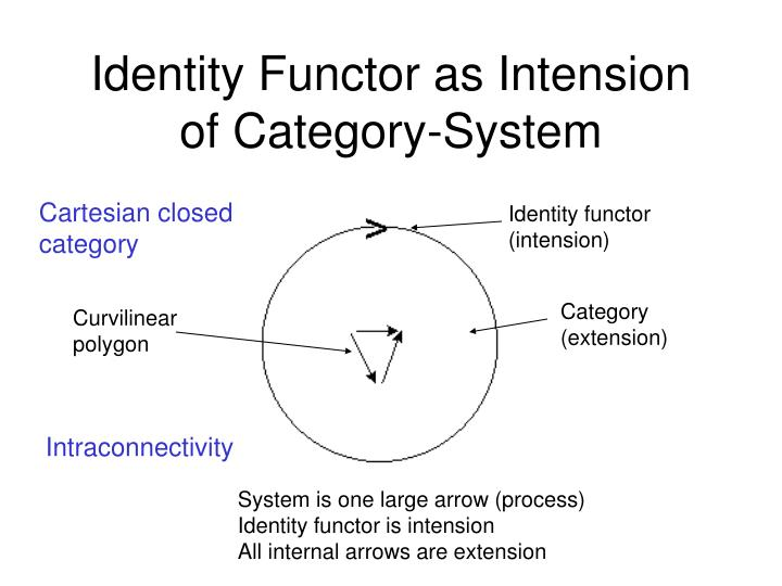 Identity Functor as Intension of Category-System