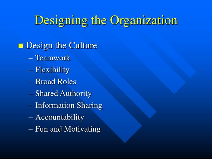 Designing the Organization