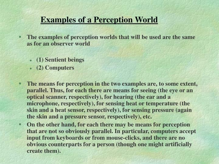 Examples of a Perception World