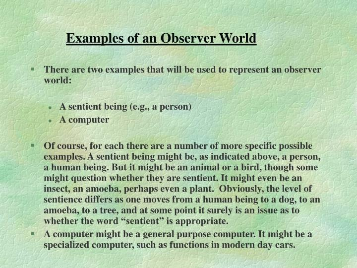 Examples of an Observer World