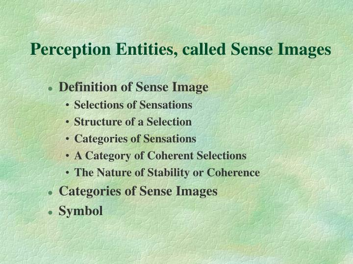 Perception Entities, called Sense Images