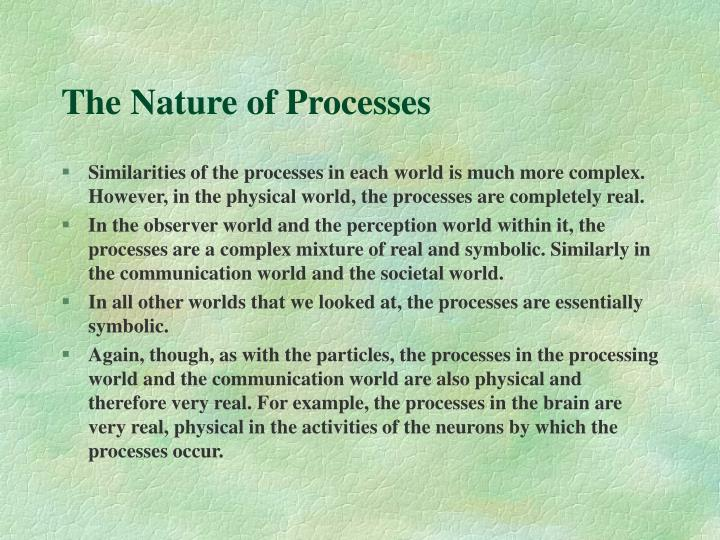 The Nature of Processes