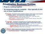 privatization business entities