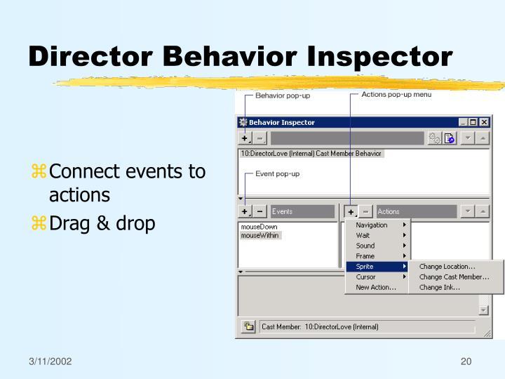 Director Behavior Inspector
