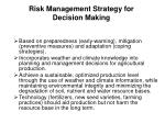 risk management strategy for d ecision making