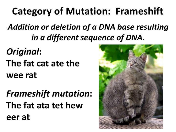 Category of Mutation: