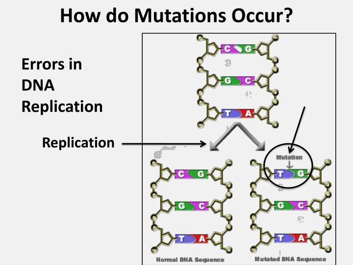 How do Mutations Occur?