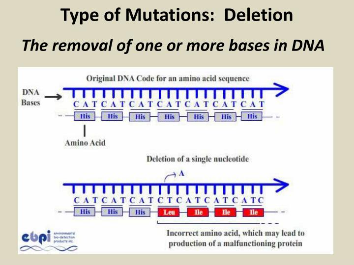 Type of Mutations:  Deletion
