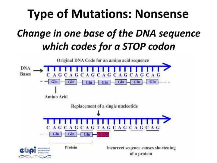 Type of Mutations: Nonsense