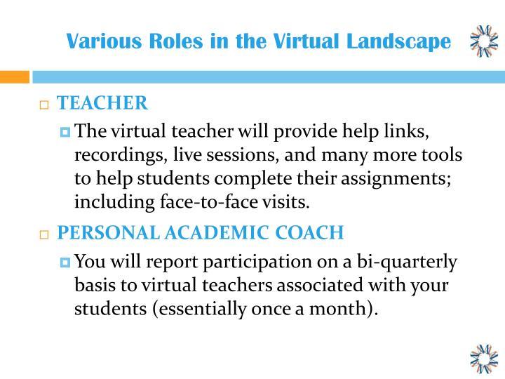 Various roles in t he virtual landscape