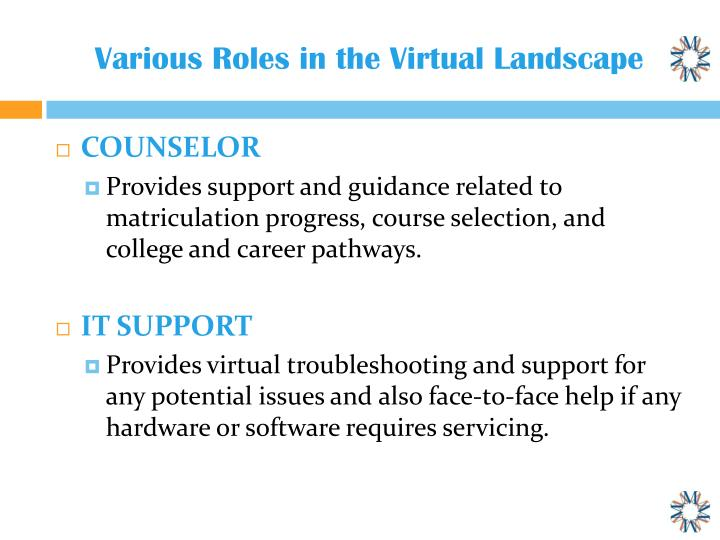 Various roles in the virtual landscape