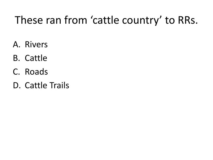 These ran from 'cattle country' to RRs.