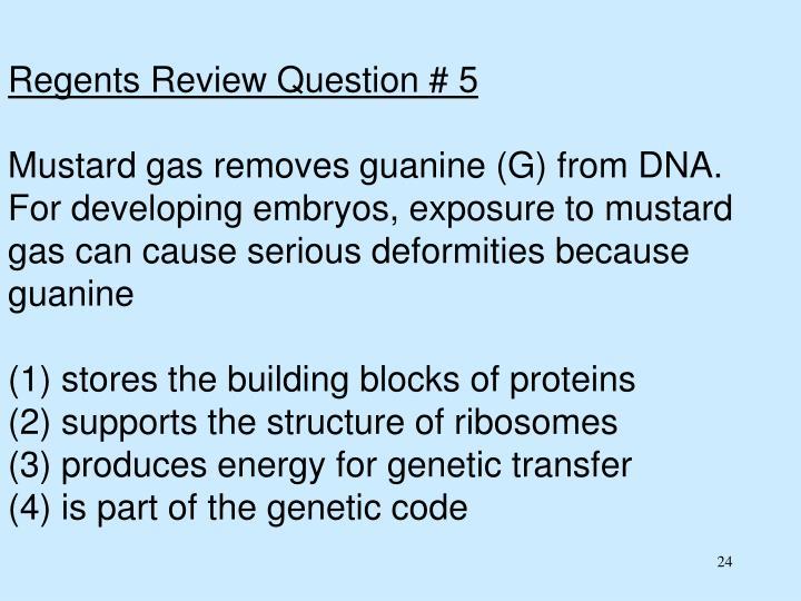 Regents Review Question # 5
