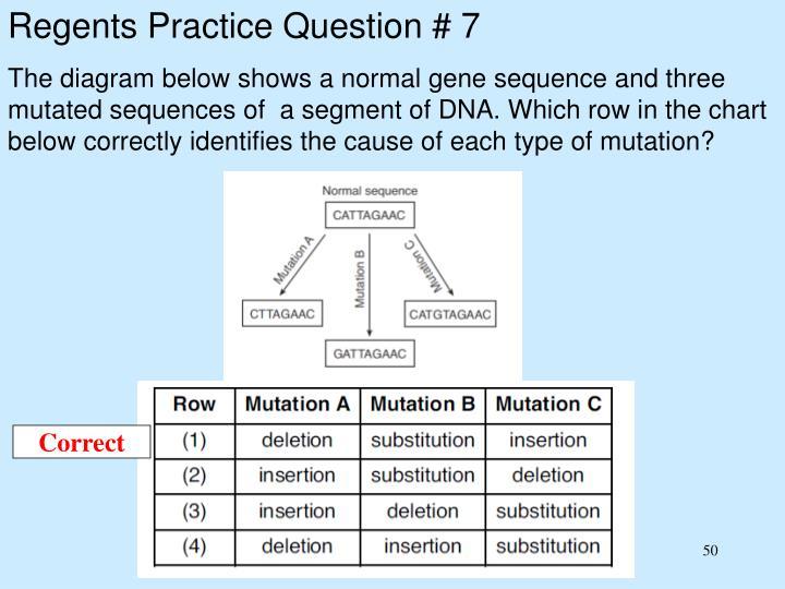 Regents Practice Question # 7