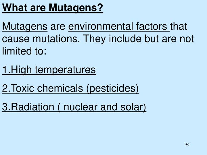 What are Mutagens?