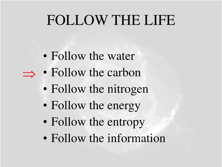 FOLLOW THE LIFE