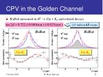 cpv in the golden channel