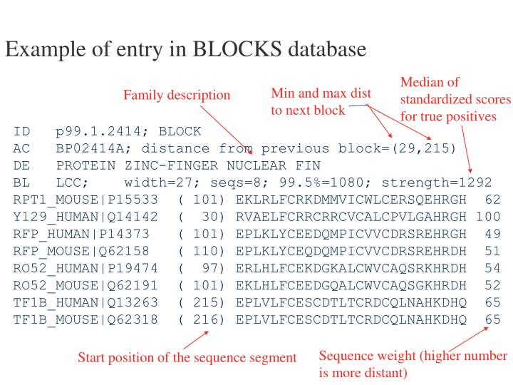 Example of entry in BLOCKS database