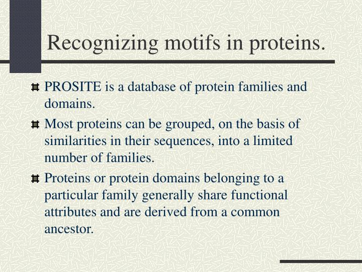 Recognizing motifs in proteins.