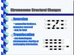 chromosome structural changes1