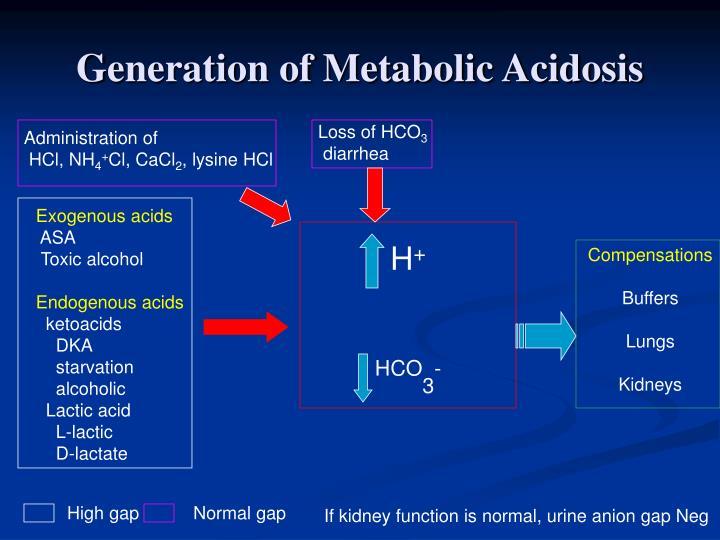 Generation of Metabolic Acidosis