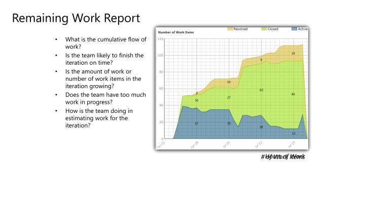 Remaining Work Report