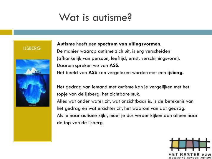 Wat is autisme?
