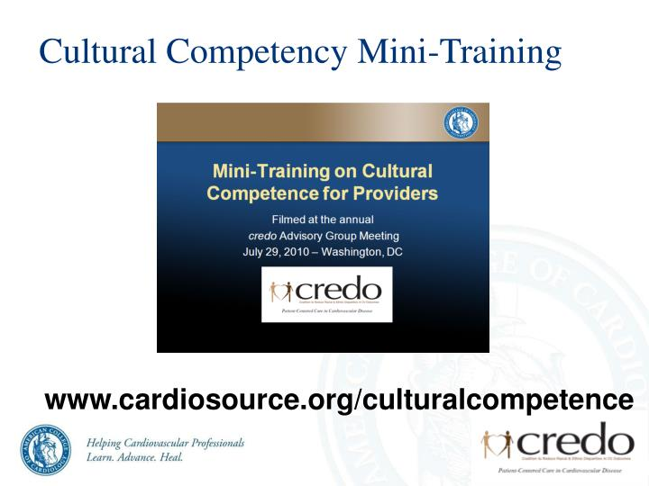 Cultural Competency Mini-Training