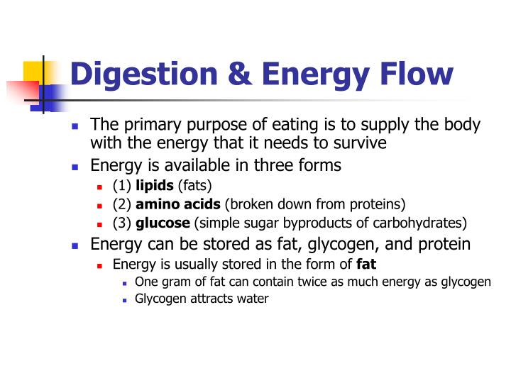 Digestion energy flow