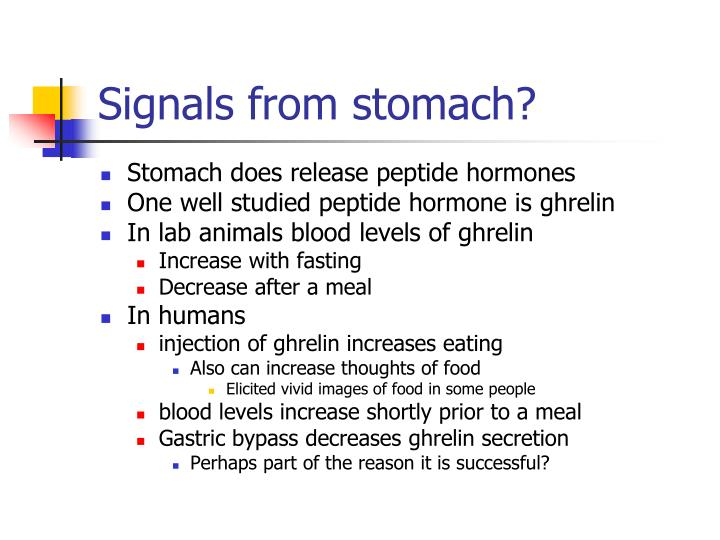Signals from stomach?