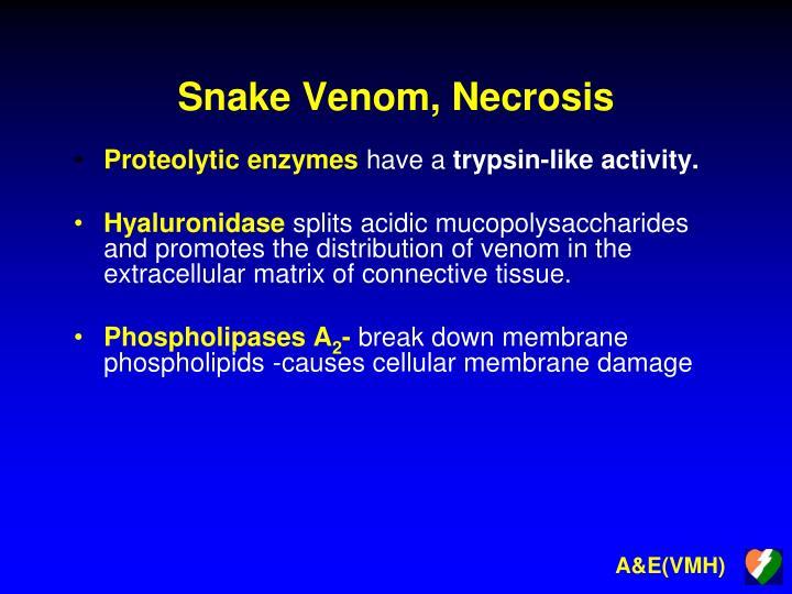 Snake Venom, Necrosis