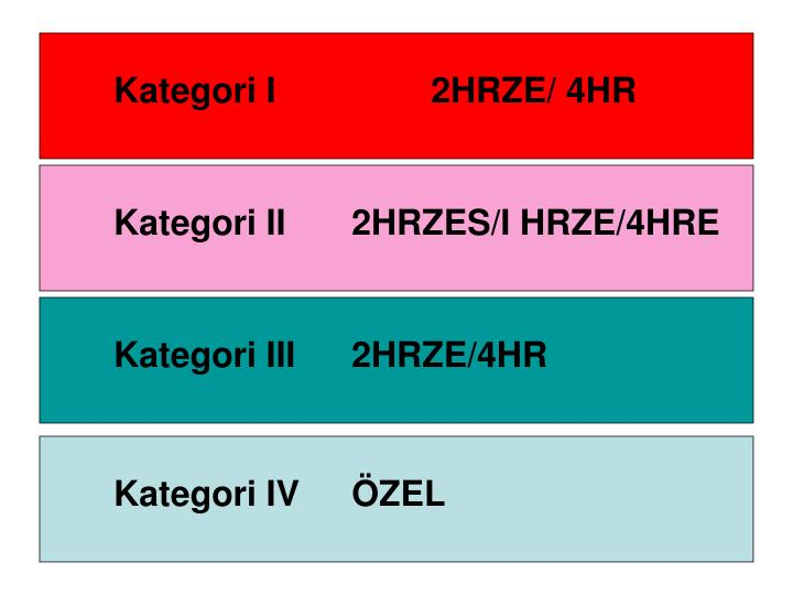 Kategori I2HRZE/ 4HR