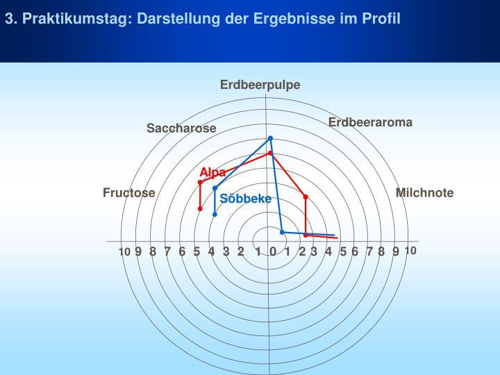 3. Praktikumstag: Darstellung der Ergebnisse im Profil