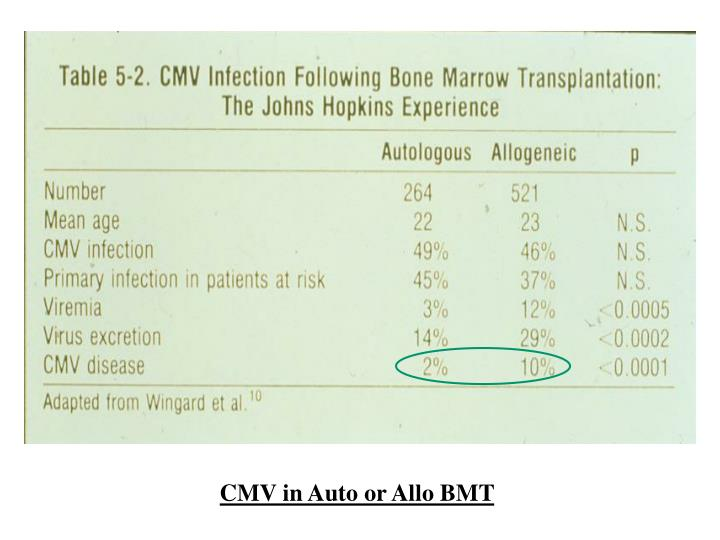 CMV in Auto or Allo BMT