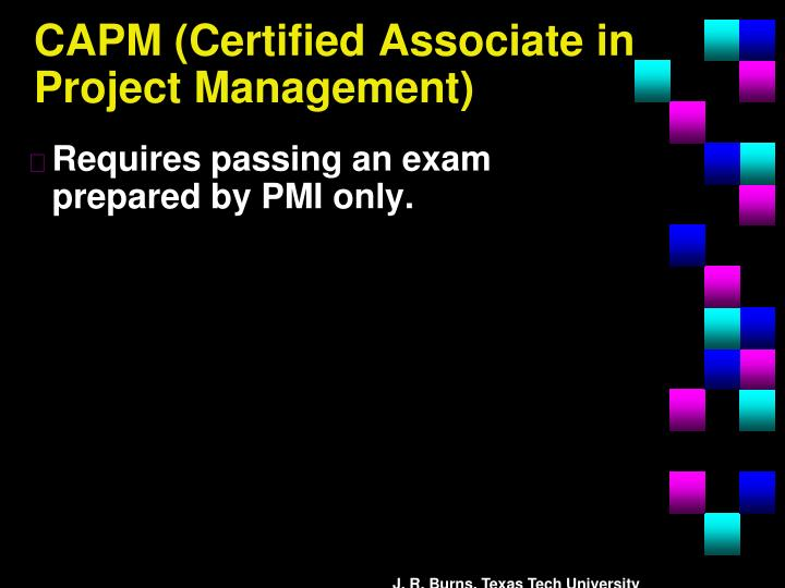 CAPM (Certified Associate in Project Management)