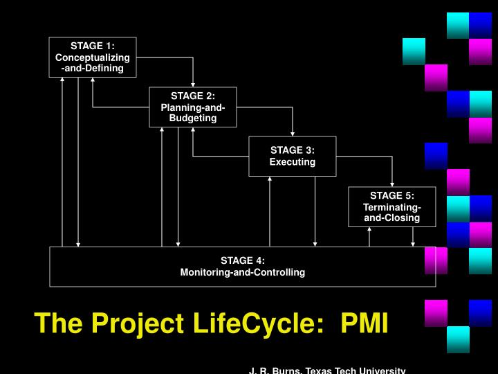 The Project LifeCycle:  PMI