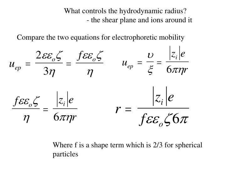 What controls the hydrodynamic radius?