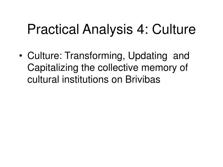 Practical Analysis 4: Culture