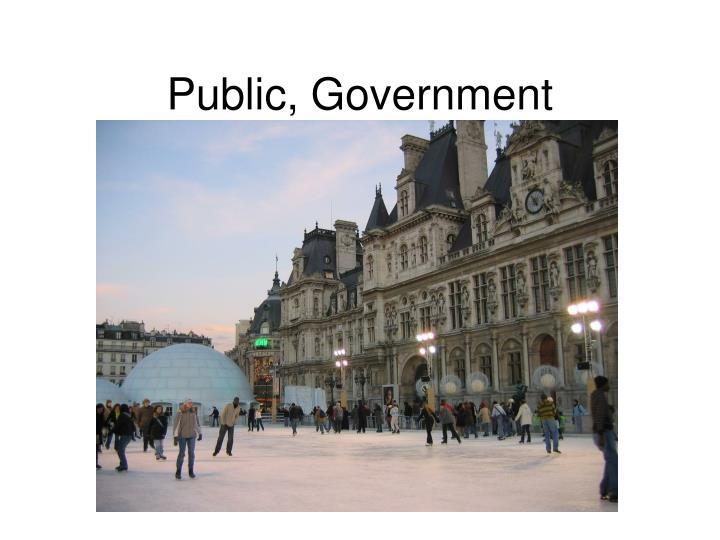 Public, Government