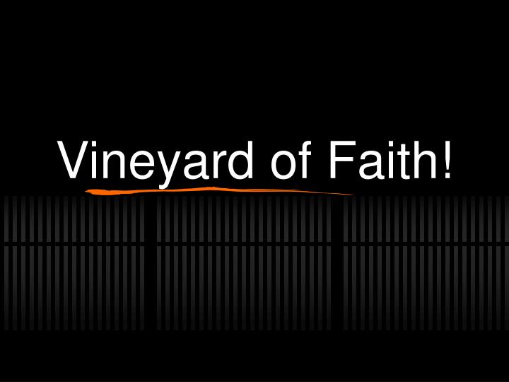 vineyard of faith