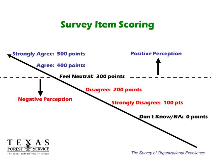 Survey Item Scoring