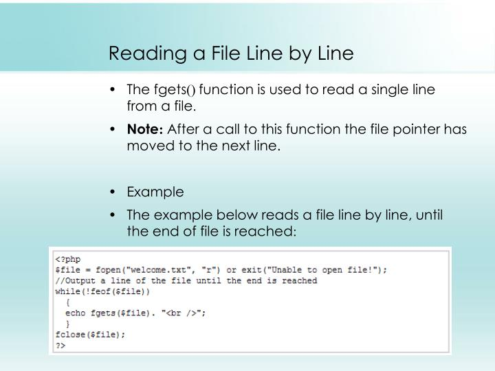 Reading a File Line by Line