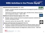 wbg activities in the private sector