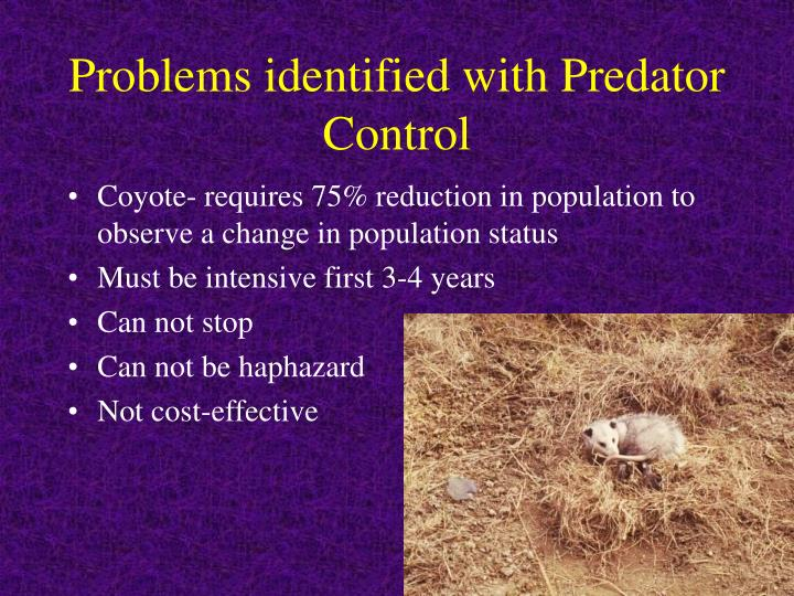 Problems identified with Predator Control