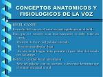 conceptos anatomicos y fisiologicos de la voz2